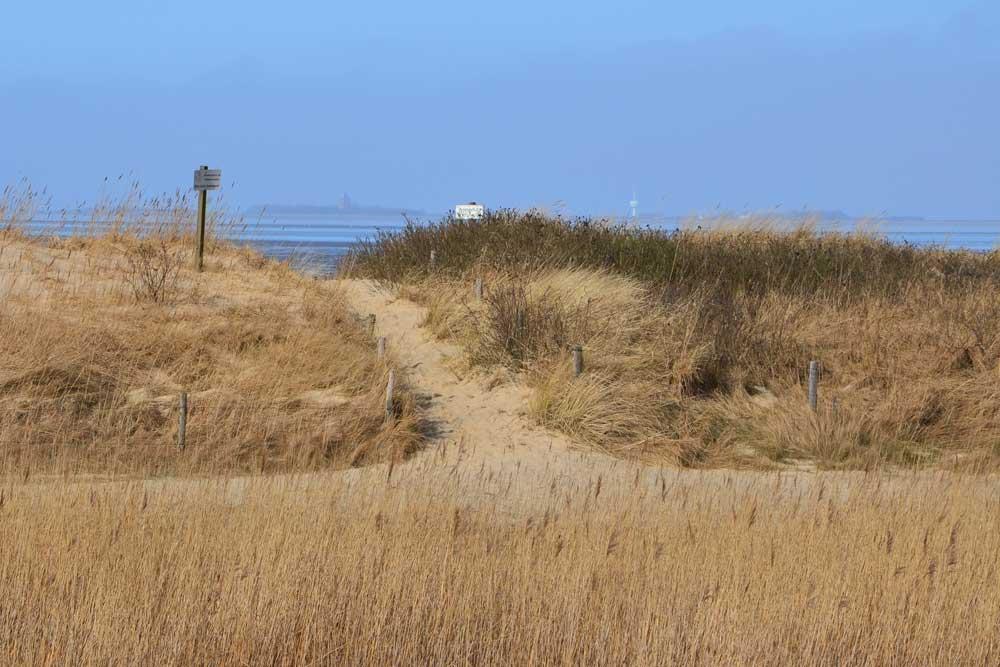 Meer und Sandküste -